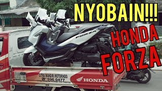 LANGSUNG NYOBAIN HONDA FORZA 250! FRESH FROM DEALER! | LAYZ MOTOR