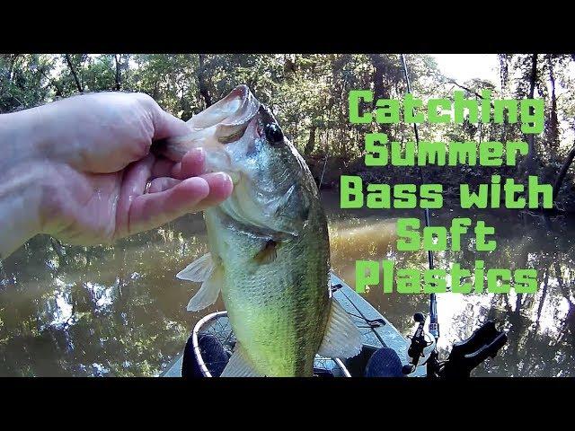 Catching tons of Summer Bass on Soft Plastics | Lake Woodlands