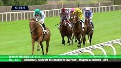 Kingman - Prix du Haras de Fresnay-le-Buffard - Jacques Le Marois 2014 G1