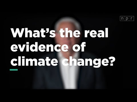 What's Real Evidence of Climate Change? | Let's Talk | NPR