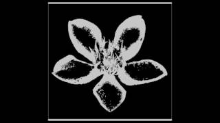 RMSAP - Puspa Indah Taman Hati (Chrisye Cover Version)
