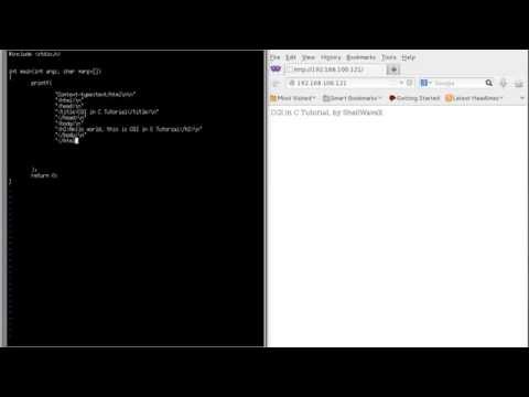 CGI Programming in C Tutorial using Raspberry PI with Linux