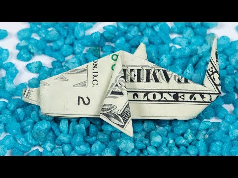 Money Origami DOLPHIN Folding For Dollar Origami FISH TANK 🐬