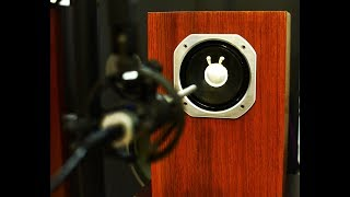 Собираю широкополосную акустику Technics 10F10. Замер АЧХ ФЧХ.