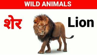 Wild animals name Hindi and English