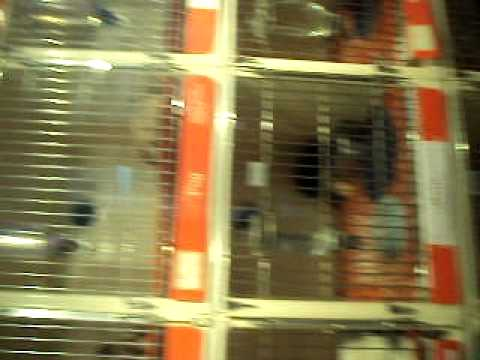 Pet Store in the Mall
