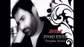 Ziyad Asad _ Firyam Kewe