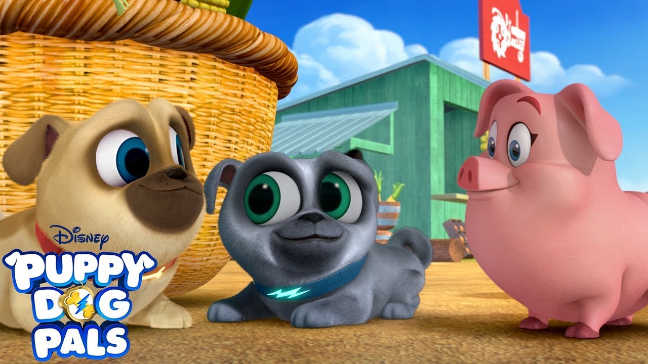 Pugs In The Mud Puppy Dog Pals Disney Junior Youtube