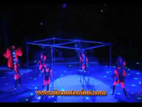 Circus Stardust Agency Presents: High Bars Circus Act and Comedy Act (Artist 01062)
