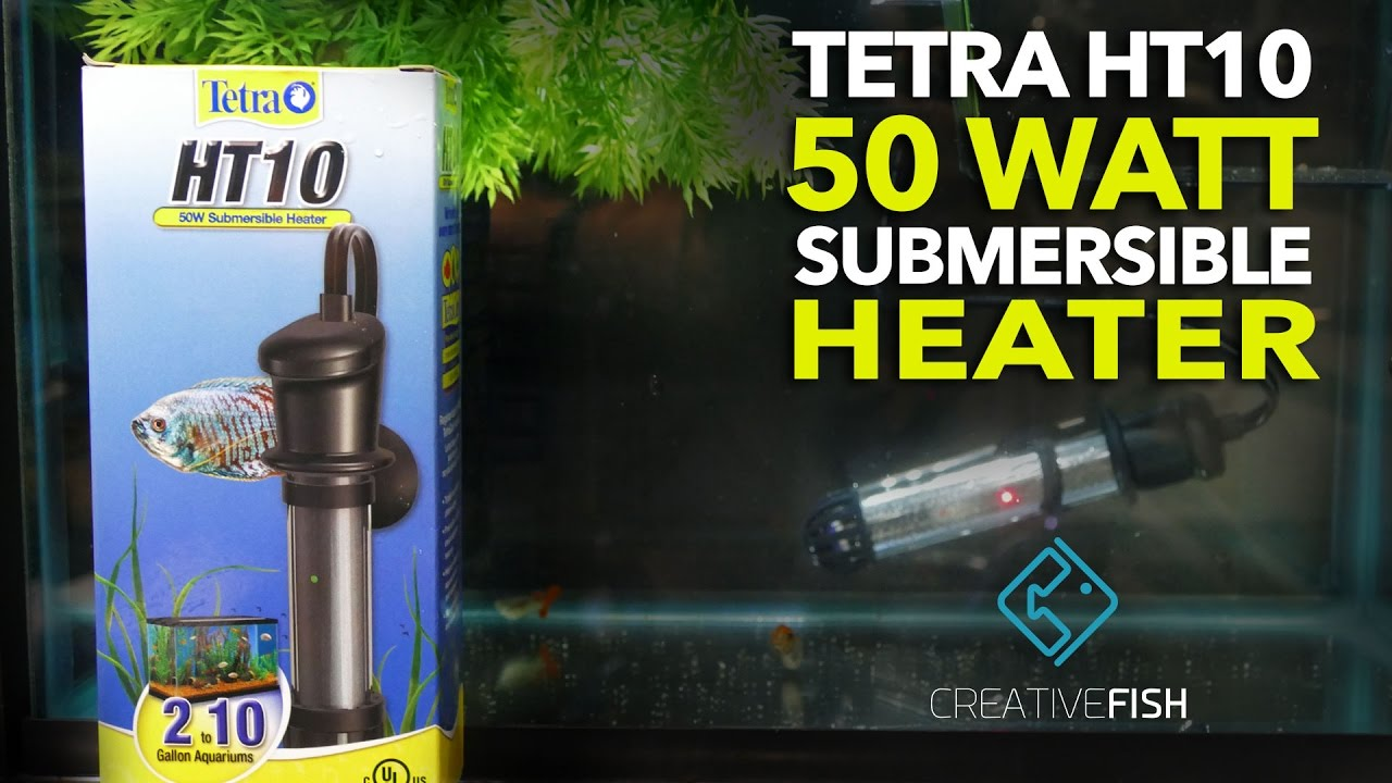 Top 10 Best Aquarium Heaters (Updated 2019)