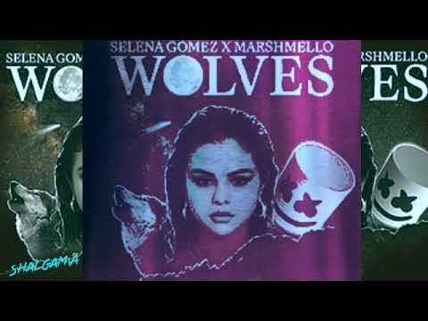 Selena Gomez|Wolves 1Hour