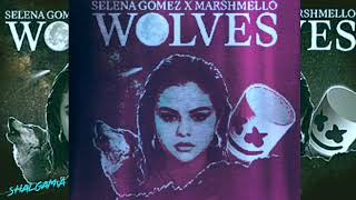 Selena Gomez Wolves 1Hour