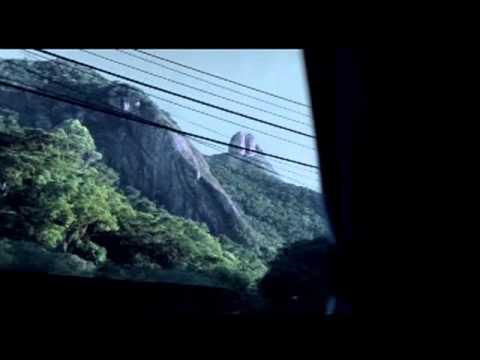 Trailer do filme A Ostra e o Vento