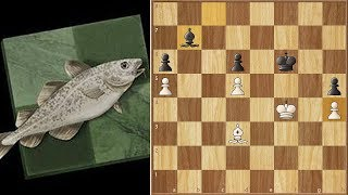 Unbelievable, But This Is Winning For White! || Stockfish vs Komodo