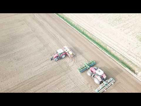 Le nouveau MF 5713S à la plantation de l'ail de semences / MF 7724 à la prépartion
