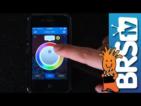 Control your Radion andVorTechfrom your Phone | How To Tuesday