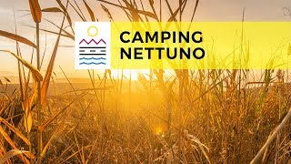 Camping Nettuno | Every Day Sicily Tour 2018