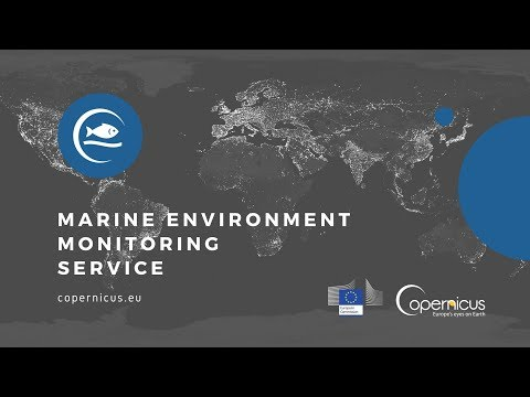 Copernicus Marine Environment Monitoring Service: Product Portfolio and Data Access