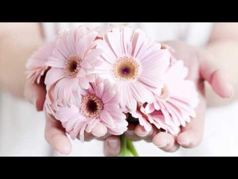 Надія Шекеряк – Для донечки