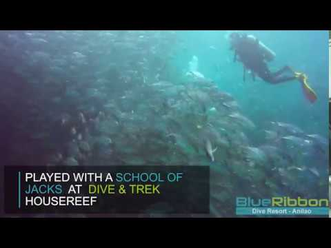 Sidemount and Ligpo Island
