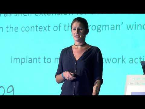 Marion Marschalek: La Quadrature Du Cercle - The APTs That Weren't (english)