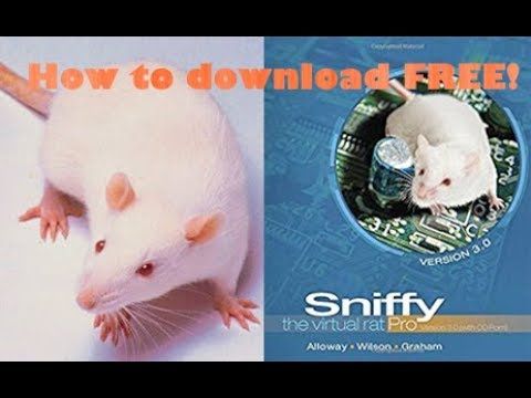 How To Download Sniffy Pro Free (Simulation Lab With Rats)