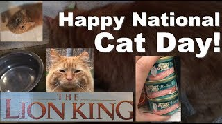Happy National Cat Day With Cinnabon