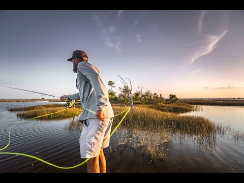 Florida Redfish - The Shallow Season