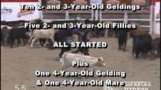 Brooks Ranch Quarter Horse Sale