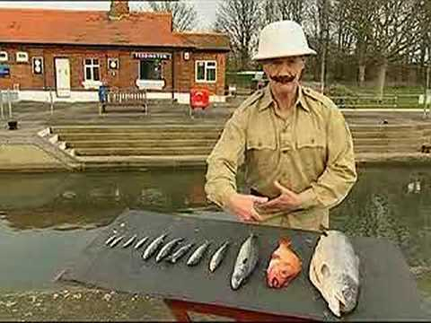 Mr Palin on the sport of Fish Slapping.