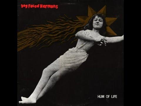 Dog Faced Hermans - Hum Of Life (Full Album)