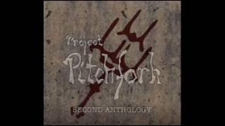 project pitchfork   -   Fleischverstärker  2016