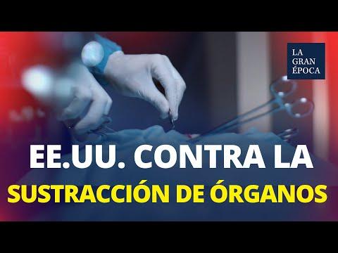 EE.UU. inicia una investigación sobre la sustracción de órganos en China