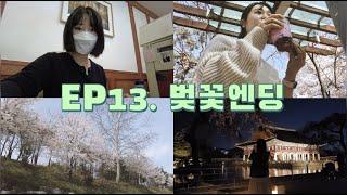 EP13.벚꽃엔딩[점심피크닉•벚꽃•경복궁야간개장]|樱花…