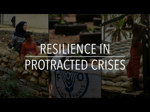 FAO Policy Series: Resilience in Protracted Crises