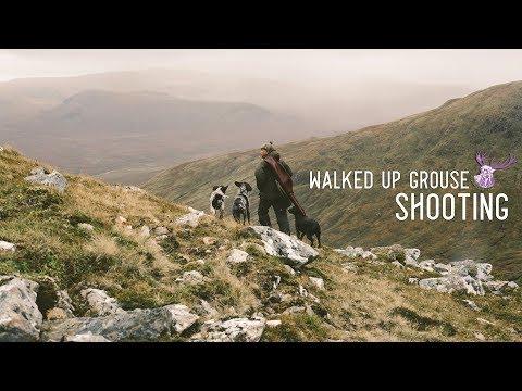 WALKED UP GROUSE SHOOTING - SCOTLAND