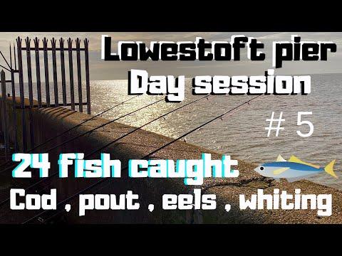 Sea Fishing UK Lowestoft Pier Beach Angling Day Session Lots Caught 24 Fish