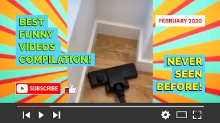 BEST FUNNY VIDEOS COMPILATION! DISCO ALPACA! (February 2020) WATCH NOW! Never seen before!