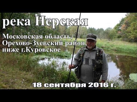 Рыбалка на реке Нерская на поплавок и фидер (пикер) 18 сентября 2016 года
