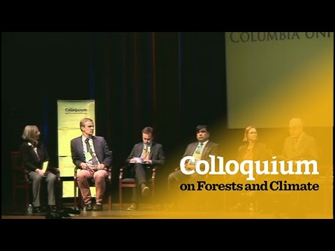 Colloquium on Forests & Climate: Discussion on Forests & Climate