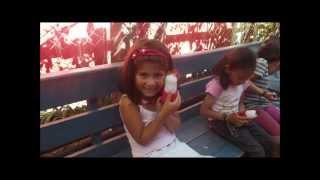 NELTUME 2013_VIDEO