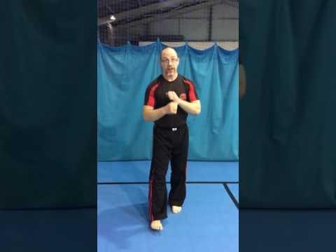 Parry set from Te-Ashi-Do Martial Arts