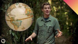 Why Do More Species Live Near the Equator?