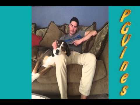 4 Minute Hilarious Vine Compilation Clean / Censored / PG (~ 40 Vines) #16