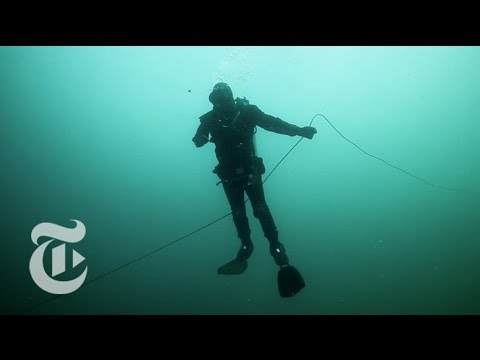 Diving for Scallops | Op-Docs | The New York Times