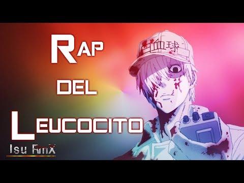 Rap del Leucocito    Hataraku Saibou    Isu RmX