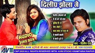 Dilip ray   Cg Song   Dilip Jhola ge   New Chhattisgarhi Geet   HD 2019    AVM STUDIO RAIPUR