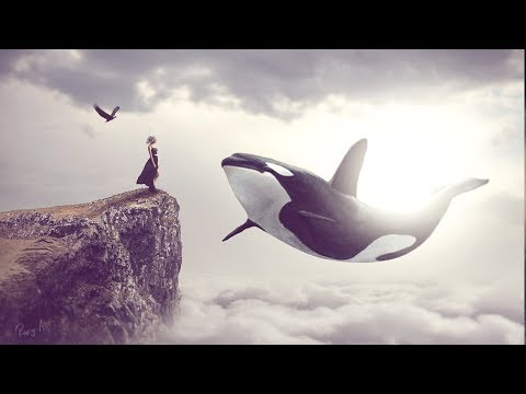 Big Whale - Photoshop Manipulation Tutorial Processing