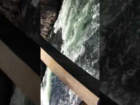 Yellowstone-National-Park 2018 September
