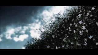 A.Vivaldi:Io son quel gelsomino(Piano)